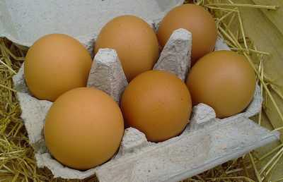 selezione delle uova