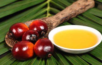 olio di palma pro e contro