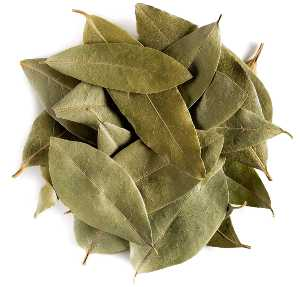 foglie di alloro biologico